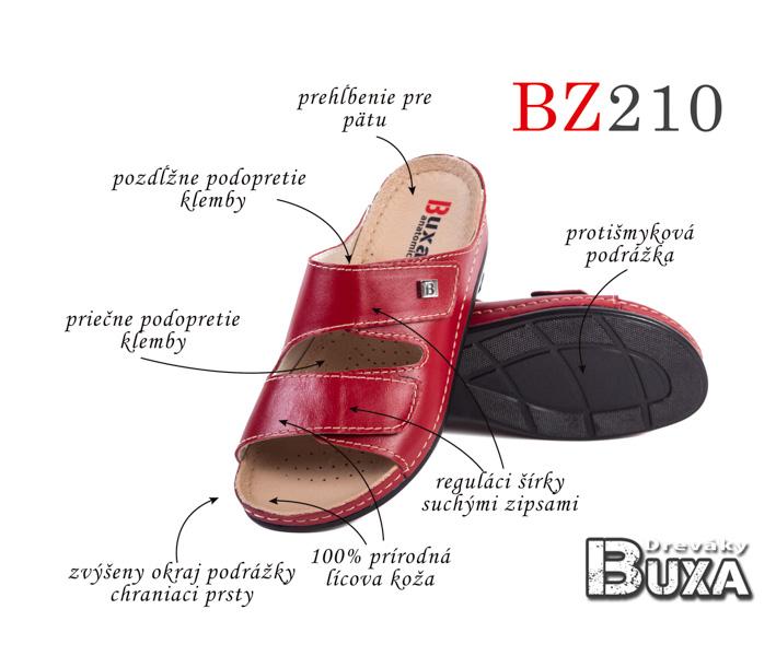 BZ210
